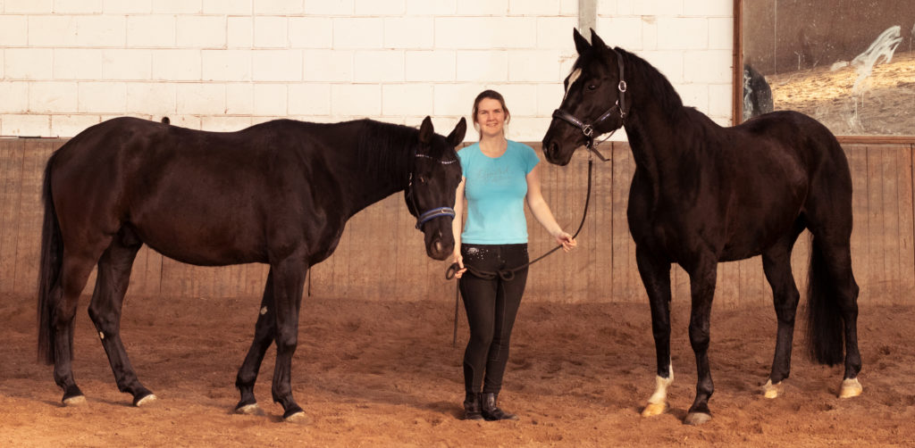 Team Einhorn - das sind meine beiden Pferde, Nico und Feli, und ich